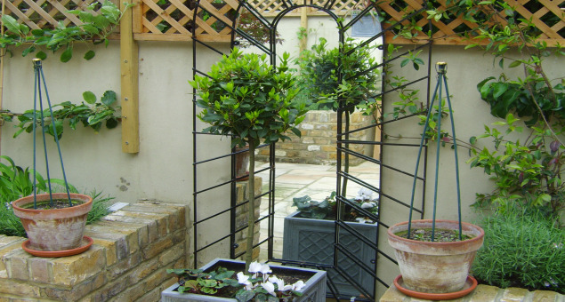 With a mirror in a perspective arch mounted to bring light and reflection into this tranquil oasis, this no longer felt like a neglected backyard, but more like the Provencale courtyard of our clients' dreams.