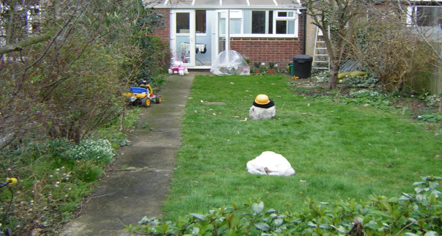 Typical was the rectangle of lawn with a path down one side. The garden had few saving graces apart from an attractively shaped Staghorn Sumach (Rhus) and a melting snowman!