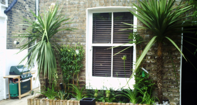 Tropical plants give the courtyard its 'wow' factor