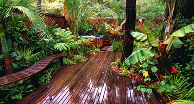 Tropical Decked Garden