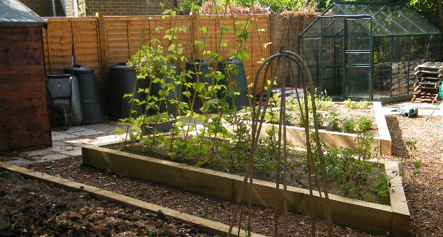 Our clients are keen gardeners and also wanted a space for growing vegetables and fruit.