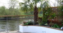 waterside garden with tropical planting