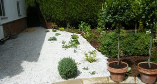 image of the white garden at the sid of the house
