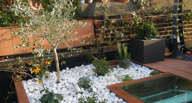 White pebbles give the garden a contemporary feel and reflect the light.