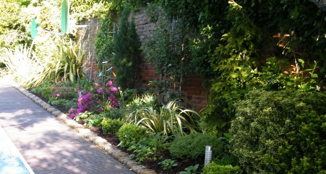 A long, south-facing border, backed by a beautiful, weathered, red brick wall, was planted with a variety of typical cottage garden favourites such as climbing roses, clematis, Lavender, Delphiniums and Iris.