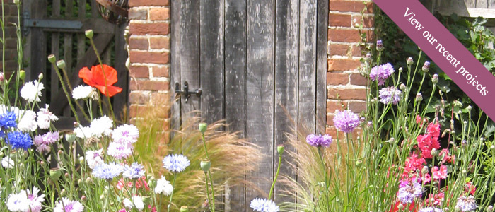 Welcome to the Sussex Gardener - garden design and gardening services in Sussex