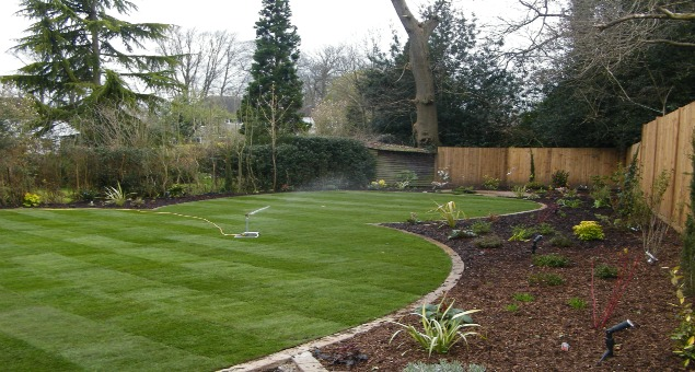 To disguise the rather awkward shape of the garden, and taking our lead from the existing curved patio, a striking theme of interlocking circles was designed to provide form and appeal in all seasons.