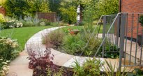 a modern garden with cottage style planting