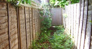 image of the side of the garden before
