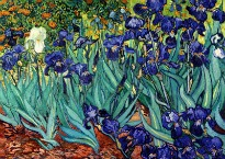 image of Van Gogh irises