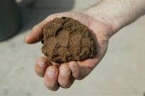 picture of clay soil