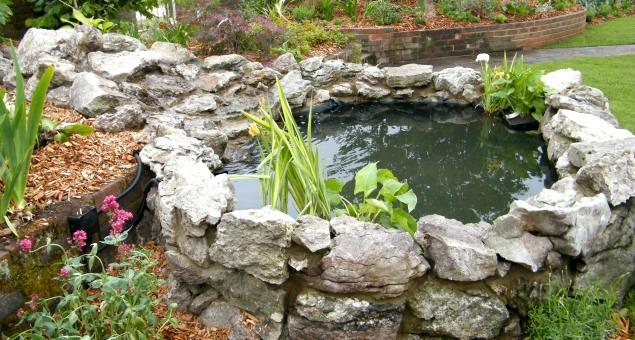 The same stone was then used to create a natural-looking waterfall. and the whole construction was then softened and made to look more natural with planting.