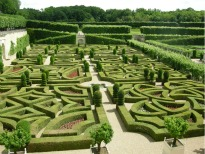 picture of garden in Villandry