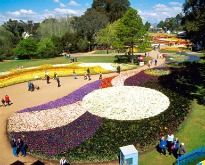 picture of floriade garden