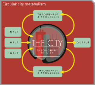 picture of circular meatabolism