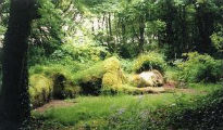 picture of Lost Gardens of Heligan