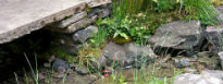 picture of cobbles and stream in Brontes Yorkshire Garden