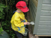 picture of shed painting
