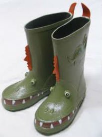 picture of wellingtons
