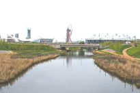 picture of wetlands at Olympic Park