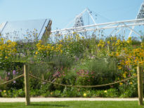 picture of Olympic Park art installation