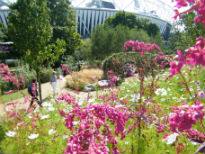 picture of Great Britiah Garden
