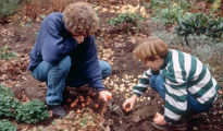 picture of children planting