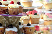 picture of cup cakes at Malvern bake-off