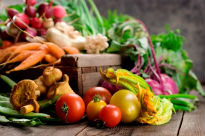 picture of harvest vegetables
