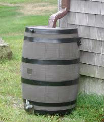 picture of rain barrel
