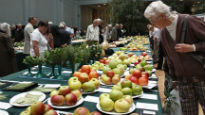 picture of London Autumn Fruit Festival