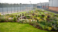 picture of Whtton Prison's gardens