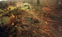 picture of Sevenoaks after the Great Storm of 1987