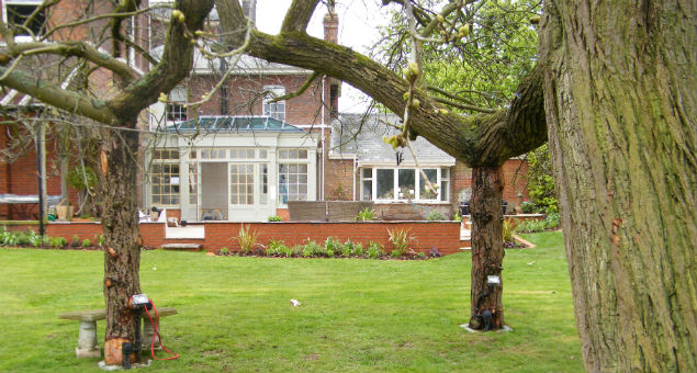 View of the house through the Chestnut tree