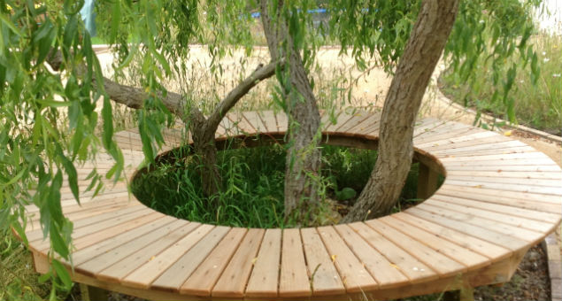 We built a bespoke seat in cedar to go around the lovely willow tree