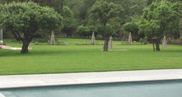 View from the pool area back to the croquet lawn with formal beds