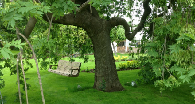 The tranquil tree seat that is facing the croquet lawn with the tree uplighters visible on the grass