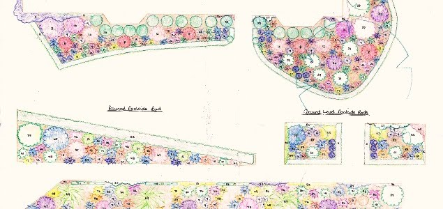 image of the hand drawn planting plan