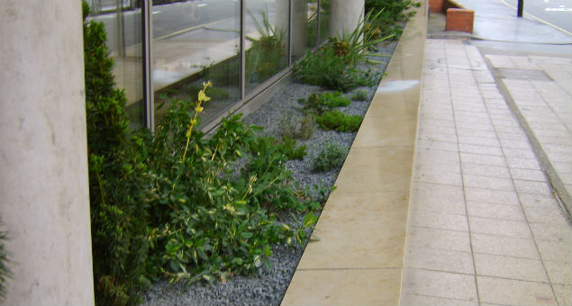 The planting selected satisfied the need for low maintenance, tolerance to the London traffic and also provided colour throughout the year providing a much more welcoming entrance to the school.