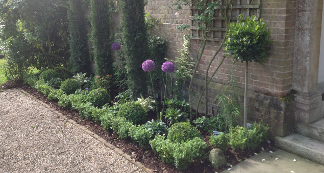 The left border with alliums in bloom